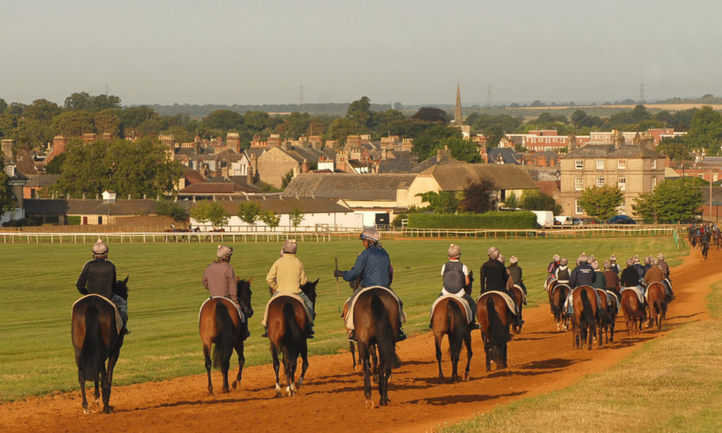 The gallops at Newmarket | Visit Newmarket races and stay at luxury B&B | Boutique luxury B&B near Newmarket races