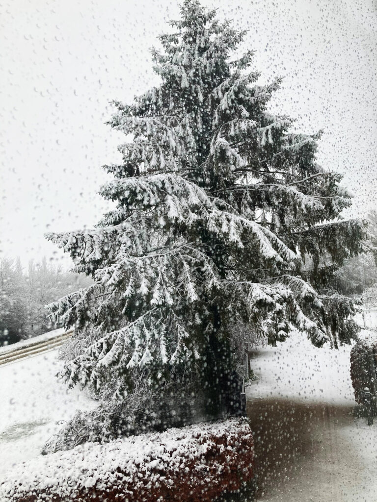 Winter snow in the country | Rural B&B offers bracing winter walks | Boutique luxury B&B with great coutnry winter walks