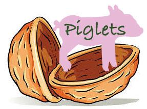 Piglets in a nutshell
